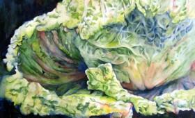 Napa Cabbage Infinity
