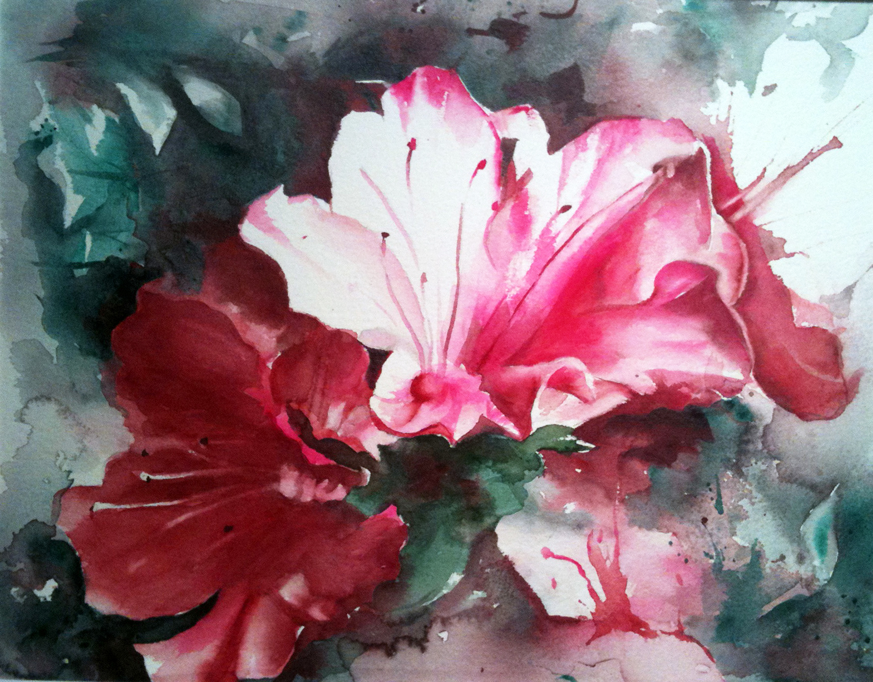 watercolor flower paintings christmas azalea
